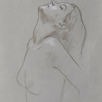 Desenho 14